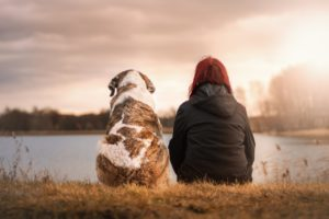 dog with owner, nature